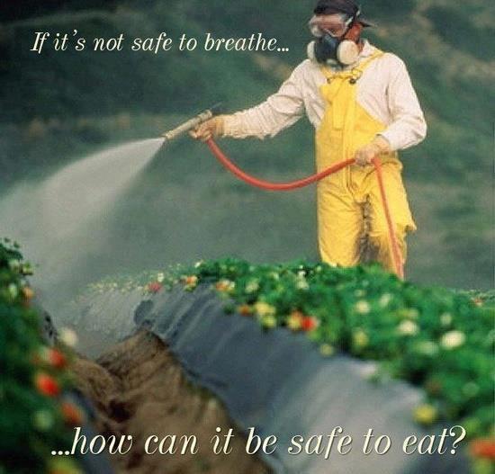 Spraying Strawberry